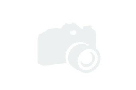 2017 Boston Whaler 345 Conquest Naples FL for sale - Next Generation